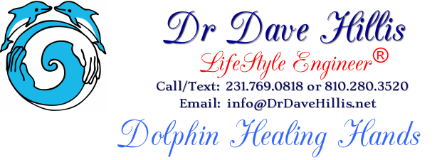 Dr Dave Hillis LifeStyle Engineer®